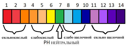pH график кислотности и щелочности
