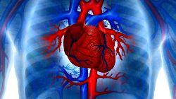 кардиологические боли