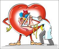 кардиолог лечит сердце рисунок