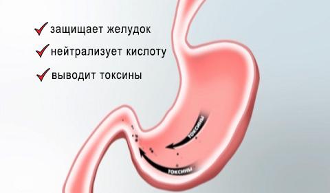 рисунок как действует «Фосфалюгель» в желудке