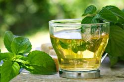 Повышенная кислотность желудка: симптомы, лечение народными средствами